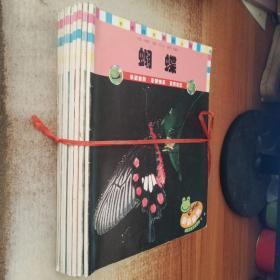 亲亲自然系列丛书:草莓、玉米、蝴蝶、小瓢虫、蚊子、小种子、米、小狗狗、兔子、叶子(10册合售)