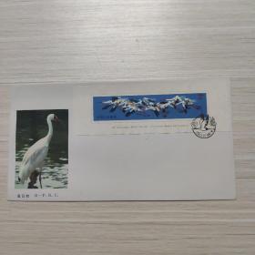 信封:白鹤 T110(小型张)-纪念封/首日封