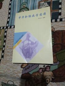 中华肛肠病学图谱