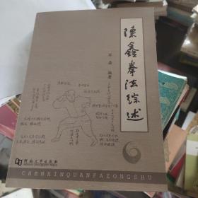 陈鑫拳法综述