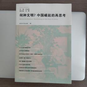 何种文明?中国崛起的再思考:知识分子论丛(第10辑)
