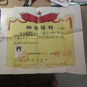 福建省惠安县城西中心毕业证书1986
