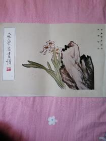 荣宝斋画谱(九)写意花卉部分 陈半丁 绘