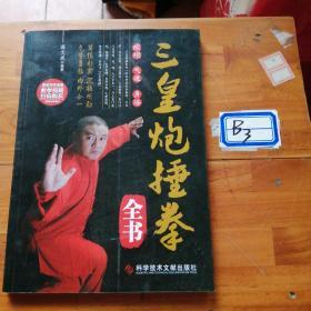 三皇炮捶拳全書