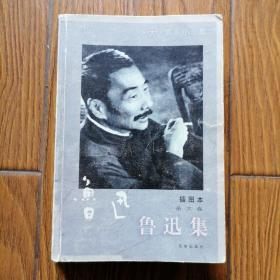 鲁迅集·杂文卷