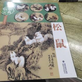 临摹宝典中国画技法:松鼠