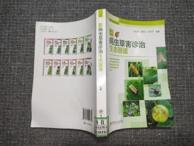 梨病虫草害诊治生态图谱【书右下侧有折痕】