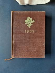 1957年美术日记(完整48幅图),94年到96年三年炒股日记
