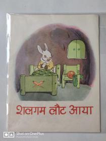 【五六十年代出版社库存样书】彩色老版连环画 萝卜回来了 1958年一版一印  见图 请看好描述