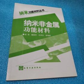 纳米非金属功能材料——纳米功能材料丛书