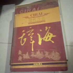 现代汉语辞海2