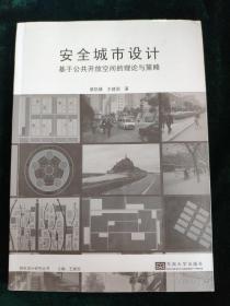 城市设计研究丛书·安全城市设计:基于公共开放空间的理论与策略