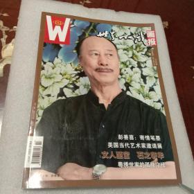 世界知识画报:艺术视界 2014年7月总488期(本期封面人物:彭善喜)