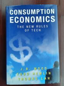 Consumption Economics: The New Rules of Tech(现货直发不耽误)