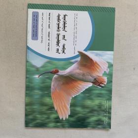 生物学七年级上册 探究活动报告册 蒙文