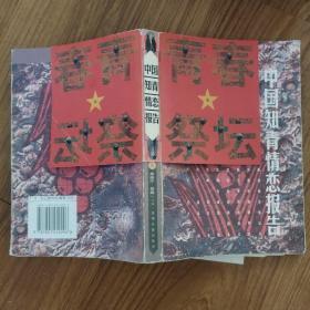 中国知青情恋报告:2