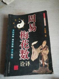 周易梅花数诠译