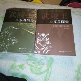 长篇历史传奇系列小说:《武陵王文星曜天