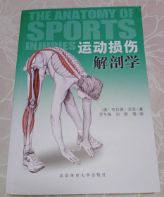 正版 运动损伤解剖学 运动系统损伤修复治疗康复 拉伸运动损伤恢复指导书 常见运动损伤症状与处理书 北京体育大学体能训练营养学书