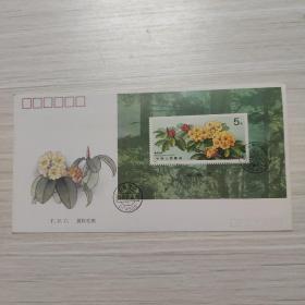 信封:杜鹃花 黄怀杜鹃(小型张)-纪念封/首日封