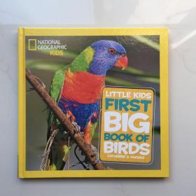 National Geographic Kids  National Geographic Little Kids First Big Book of Birds 美国国家地理 儿童百科书 精装大开本 英文原版