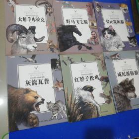 西顿动物故事 套装共8册(大角羊+松鸡+灰熊+猫+狼+野马)少2册