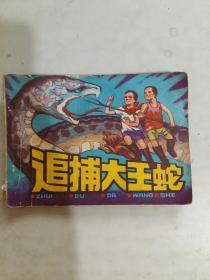 追捕大王蛇