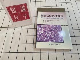临床活检病理解读系列:肝脏活检病理解读(第2版)
