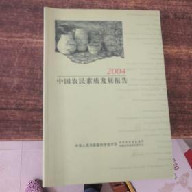 中国农民素质报告2004
