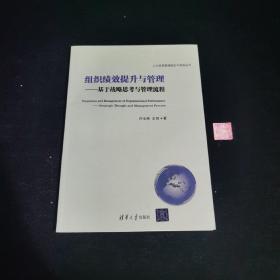 人力资源管理理论与实践丛书·组织绩效提升与管理:基于战略思考与管理流程