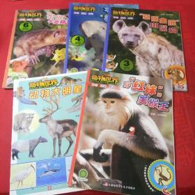 动物世界神奇探秘感动2016年1、2、3、4、6期共5本合售