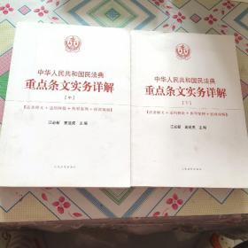中华人民共和国民法典重点条文实务详解  中下册