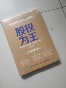 股权为王:股权激励股权合伙股权投融一本通【未开封】