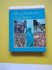 MANY AMERICANS-ONE NATION 许多美国人是一个国家