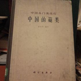 中国各门类化石 中国的䗴类