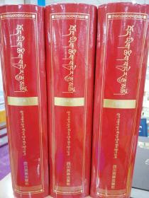 藏文辞海(修订版)(上中下)
