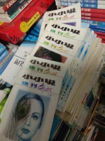 小小说选刊1997年,1998年,2000年,三年半月刊,共六十本合拍