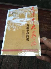 红色广东丛书:广东中央苏区大埔革命简史