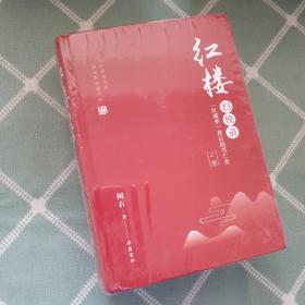 红楼扫残录:《红楼梦》背后的兴亡史