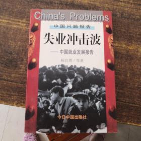 失业冲击波:中国就业发展报告(杨宜勇签赠)