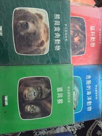 野生动物世界 (熊与食肉动物 危险的海洋动物 貓科动物 猿与猴)4本合集 中文版