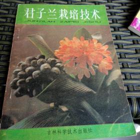 君子兰栽培技术。