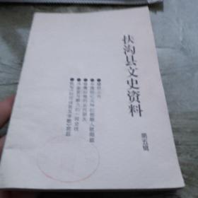 扶沟文史资料第五辑