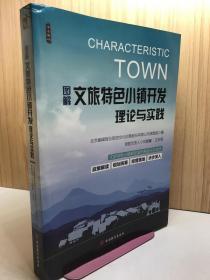 图解文旅特色小镇开发理论与实践