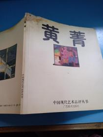 黄菁:中国现代艺术品评丛书(2002年一版一印仅印1千册)孔网孤本,稀有本,注:具体品相看图,看图下单,售后不退