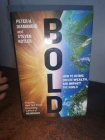 Bold:How to Go Big, Create Wealth and Impact the World