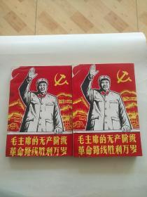 毛主席的无产阶级革命路线胜利万岁  上下