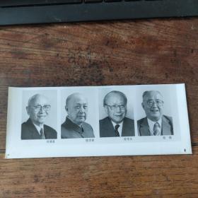 1993年,新当选的八届政协副主席:钱学森、刘靖基、钱伟长、胡绳