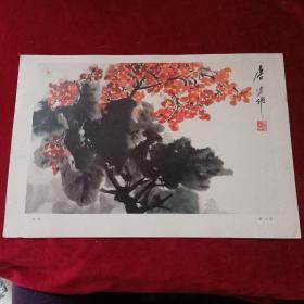 8开文革前后老画片(印刷品):《秋艳》唐云作