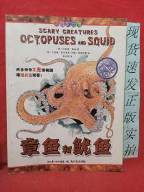章鱼和鱿鱼